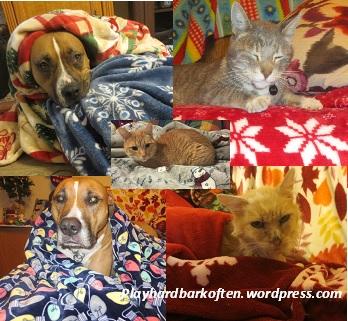 Six Christmas Blankets